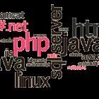 ngon-ngu-nao-phu-hop-cho-thiet-ke-website-doanh-nghiep-1